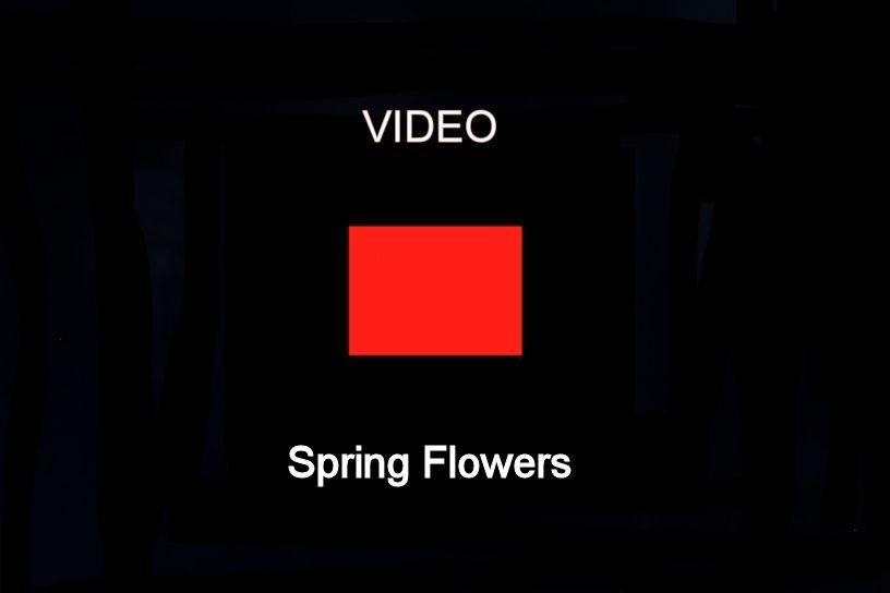 Engstler Kuckucksuhr - Frühlingsblumen  18 cm