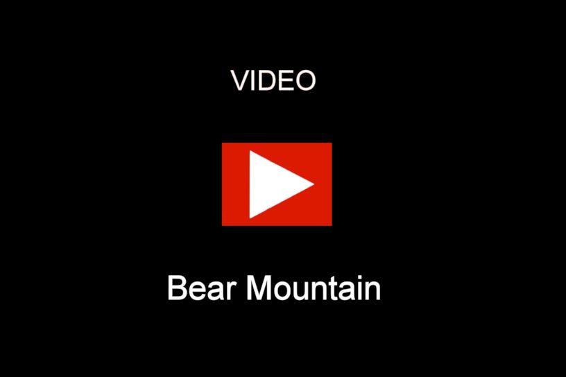 HerrZeit Cuckoo Clock - Bear Mountain